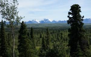 Alaska_DayEight_732.JPG