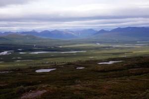 Alaska_DayNine_919.JPG