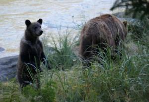 Alaska_DayThirteen_1665.JPG