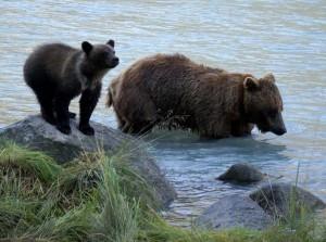 Alaska_DayThirteen_1670.JPG
